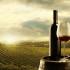 Histaminfreier Wein zum Essen